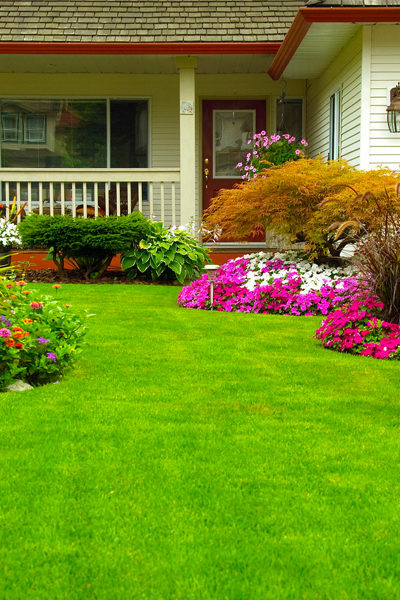 Landscaping Maintenance & Services